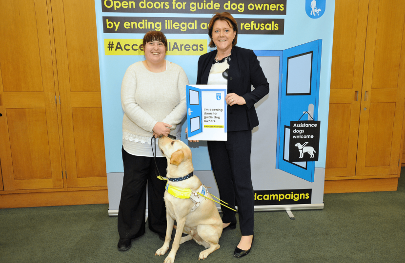 Guide Dogs 2018