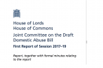 Joint Committee on DDAB Report
